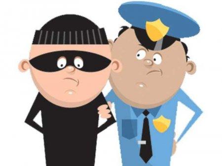 Photo of Преступление и наказание. Необычные правонарушения – смешные и печальные.